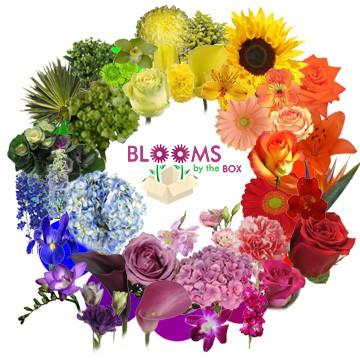 Designing Fresh Flower Arrangements: Working the Flower Color Wheel