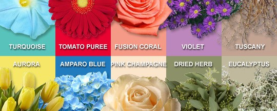 Color Trends for Floral Design