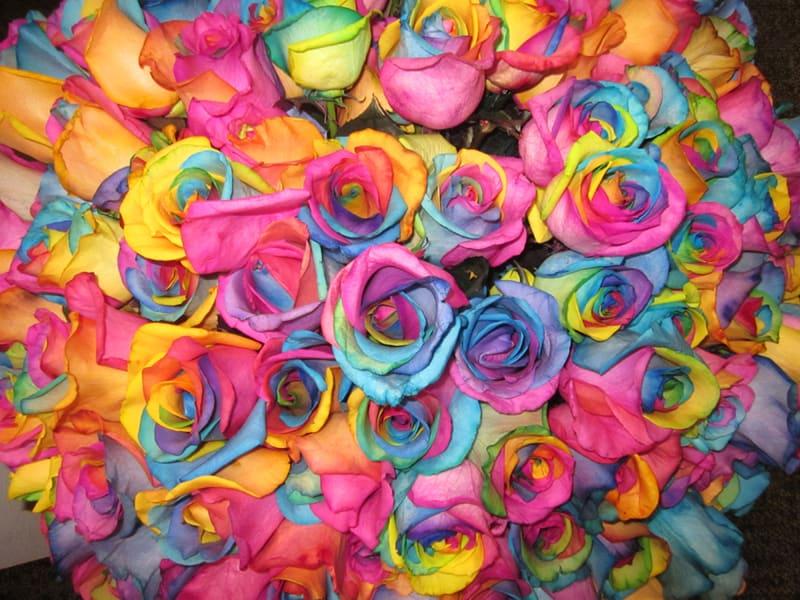 Rainbow rose bouquet wholesale wedding flowers blog for Rainbow dyed roses