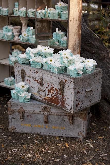 Throw Daisies at Wedding
