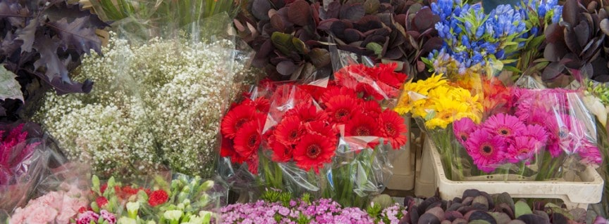 Preparing and Storing Wholesale Flowers