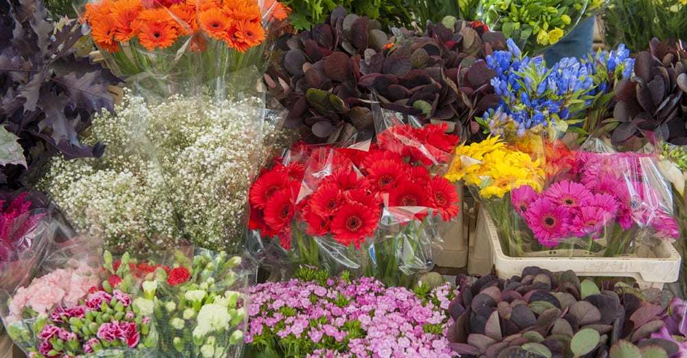 How to Store Wholesale Flowers – Floral Care 101