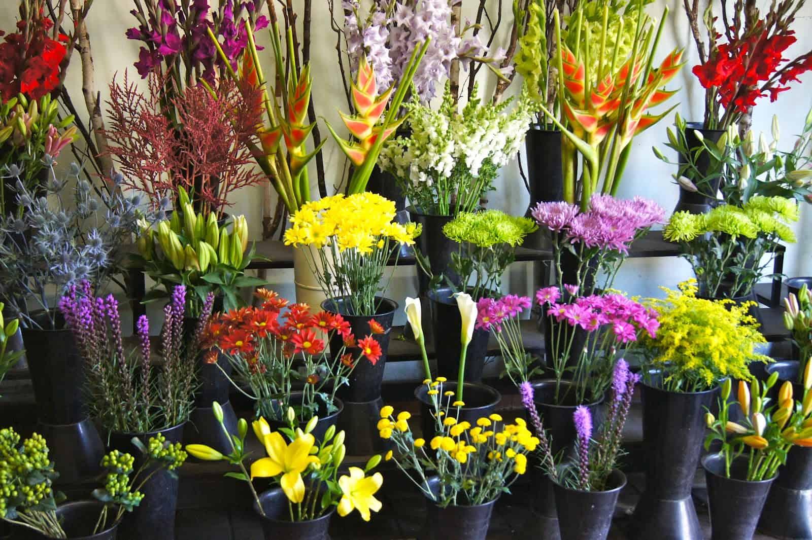 Wholesale Flowers in buckets Wholesale Wedding Flowers Blog