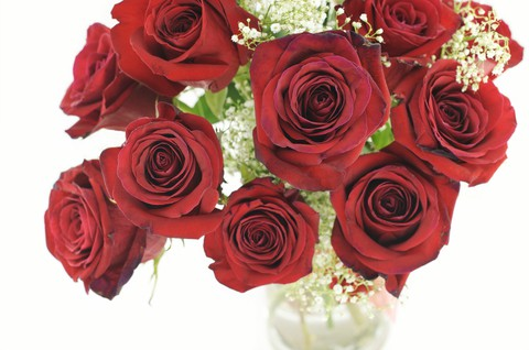 Raising Money for Your Organization Made Easy. Sell Flowers on V-Day!