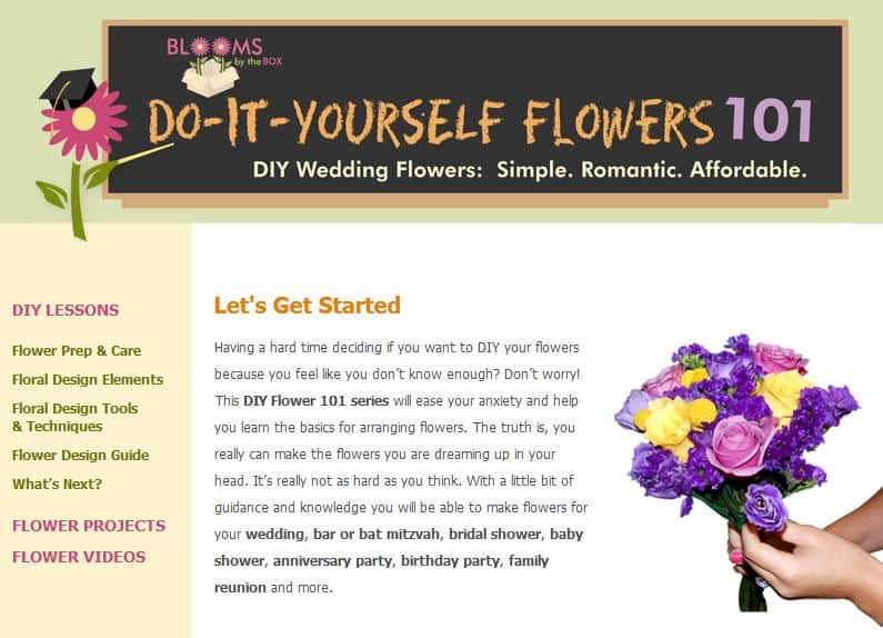 Blooms by the box launches do it yourself flowers 101 online diy flowers 101 solutioingenieria Images