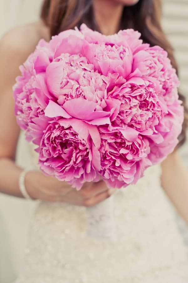 Bright-Pink-Peonies-Bridal-Shop-Miami