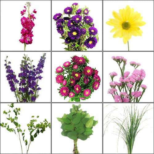 (Deep Pink & Purple) Wildflower Pack jpg