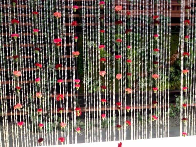 DIY Carnation Back-drop