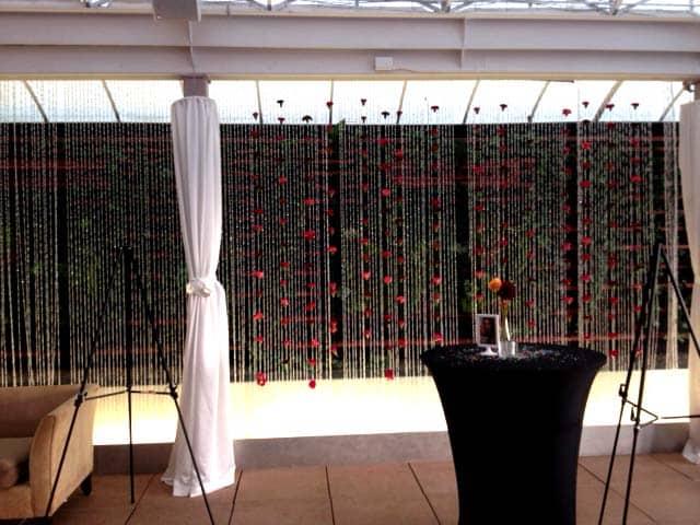 DIY Carnation Backdrop 2