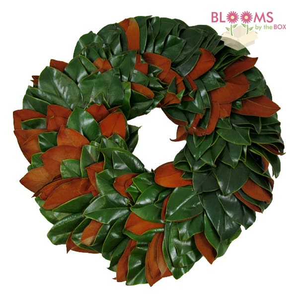 Magnolia-Wreath-14inch
