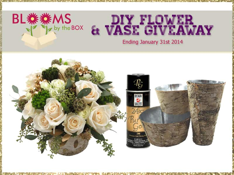 DIY Flower and Vase Giveaway from BloomsByTheBox.com!