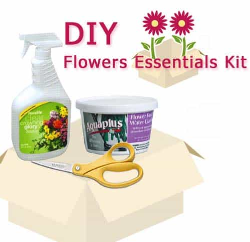 Do It Yourself Wedding Flower Supply Kit