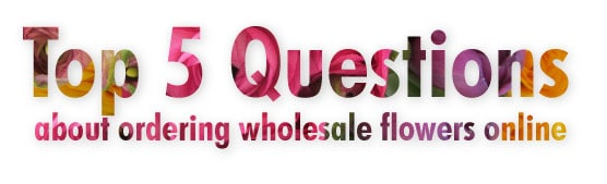 Top 5 Questions About Ordering Wholesale Flowers Online
