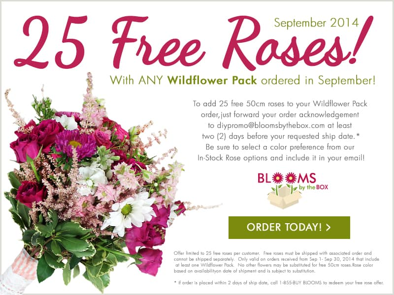 Wildflower Pack Promotion