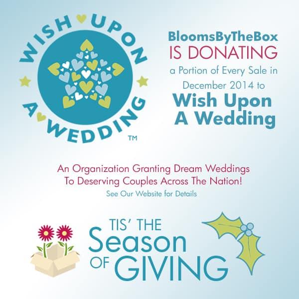 Wish Upon A Wedding – Tis' the Season of Giving