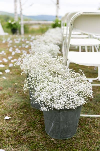 ways babys breath bucket
