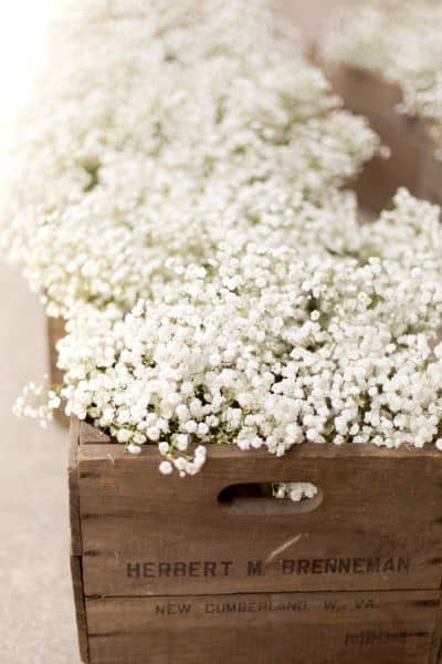 ways to use babys breath box