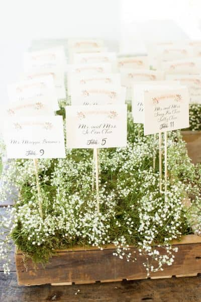 ways to use babys breath box2
