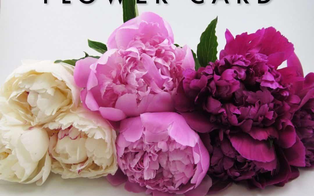 WIN $50 Blooms Flower Card – Instagram Giveaway