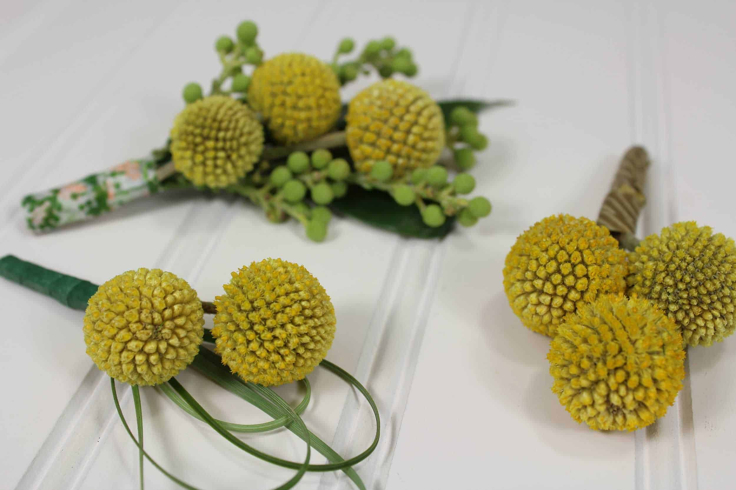 How To Make A Billy Ball Boutonniere Diy Wedding Flowers