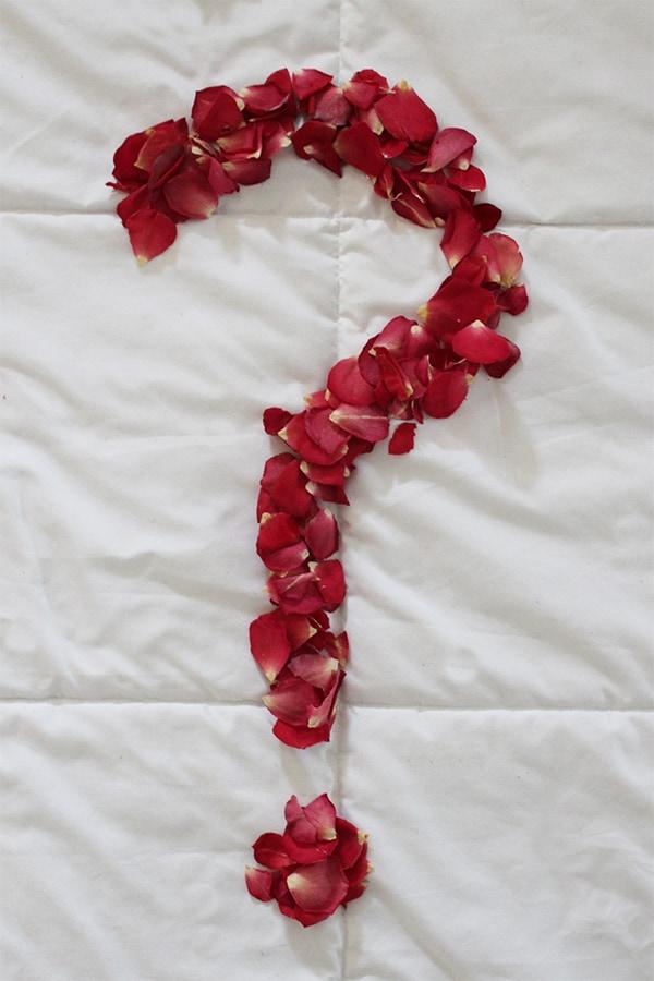 Petal Count Challenge II - Win Free Flowers!