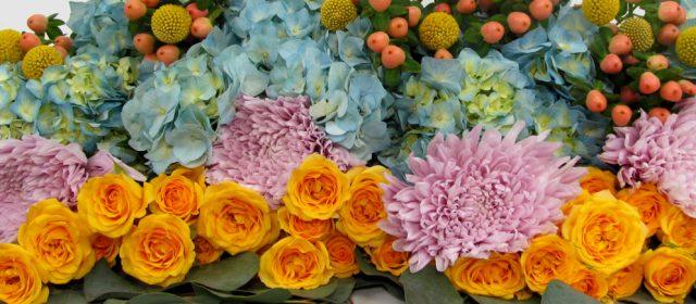 Hot Wedding Flowers 2016:  Sorbet