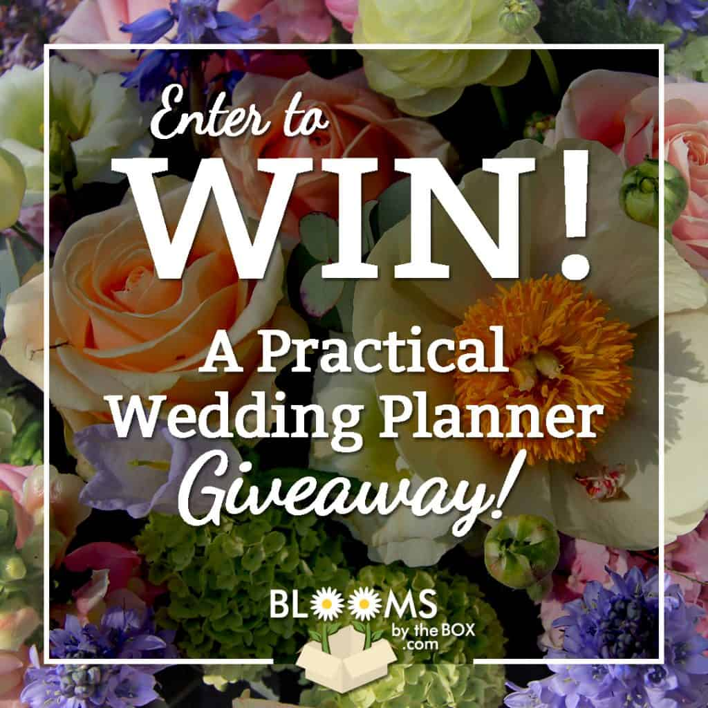 A Practical Wedding Planner Giveaway August 3rd