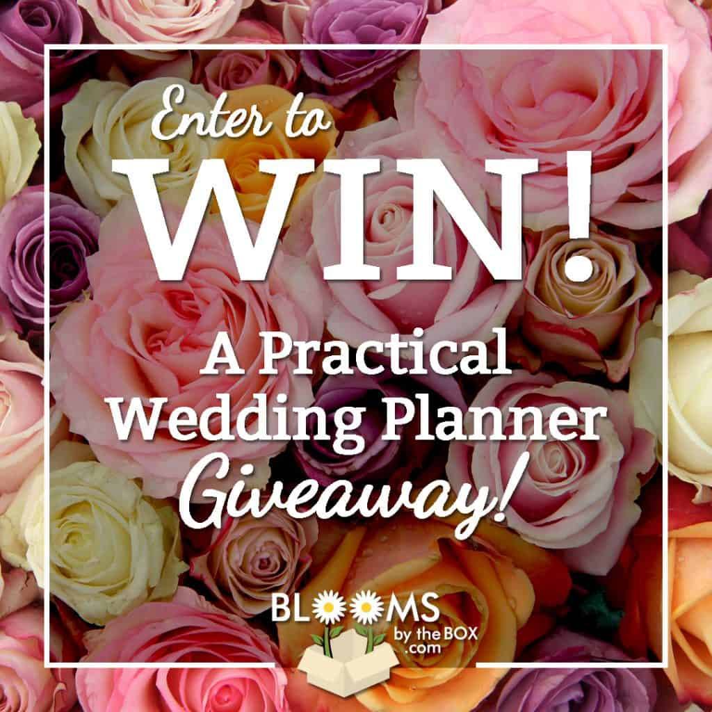 IG-APW-Planner-Giveaway-august 17
