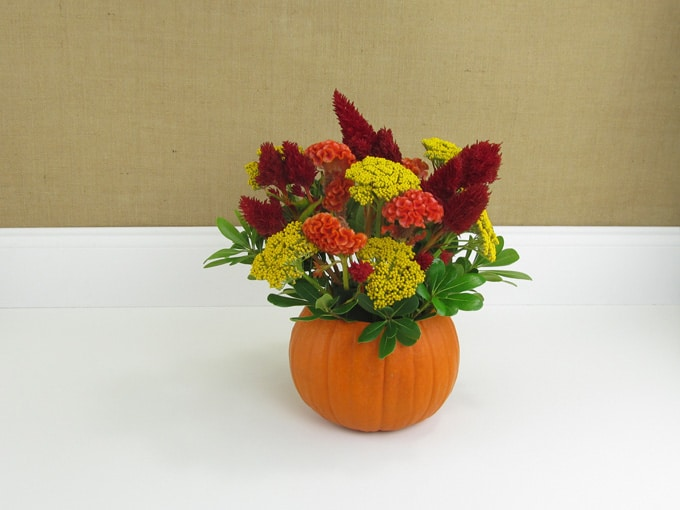 diy-pumpkin-arrangement-06