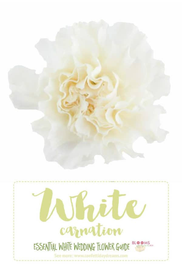 White, Wedding, Flowers, Confetti Day Dreams, Blooms by the Box