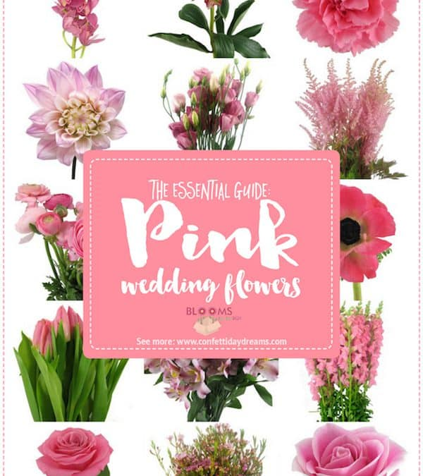 Perfectly Pink Wedding Flower Guide Feature