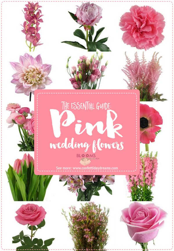 Pink Wedding, Blooms by the box, Confetti Day Dreams