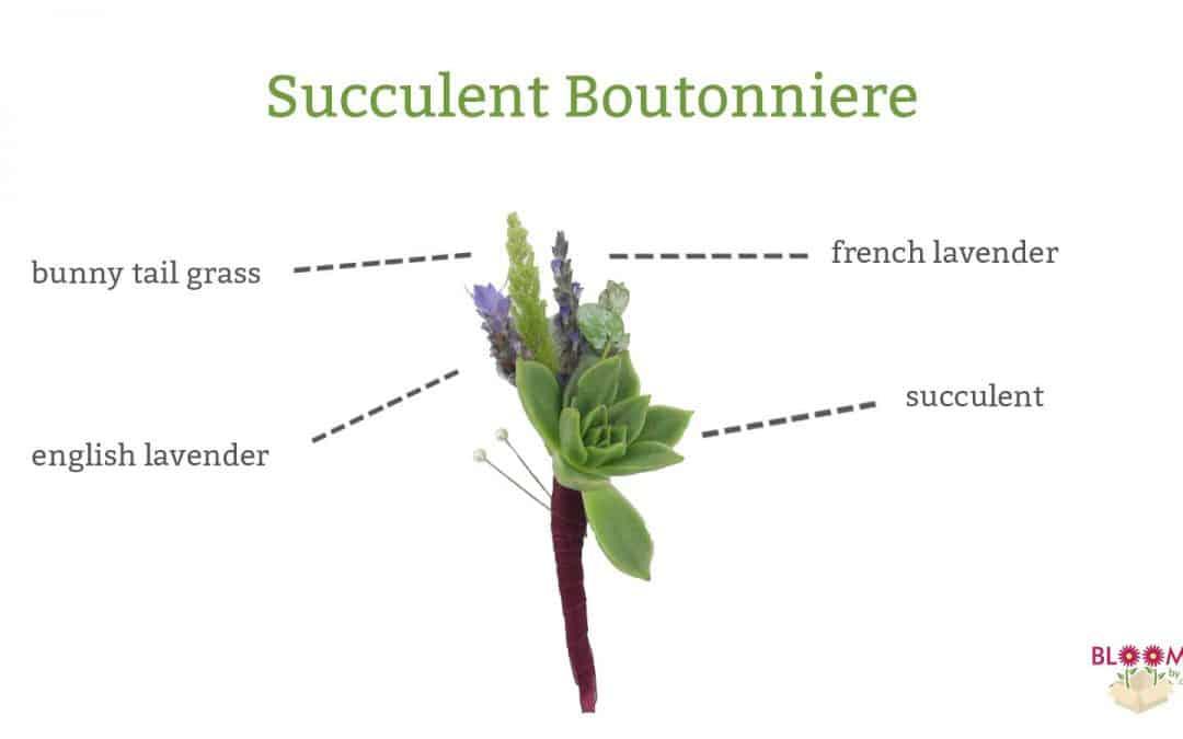 DIY Succulent Boutonniere