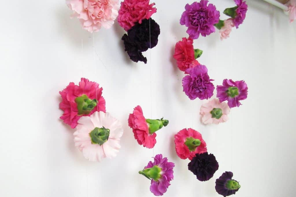 Maximize your DIY budget with a carnation curtain!