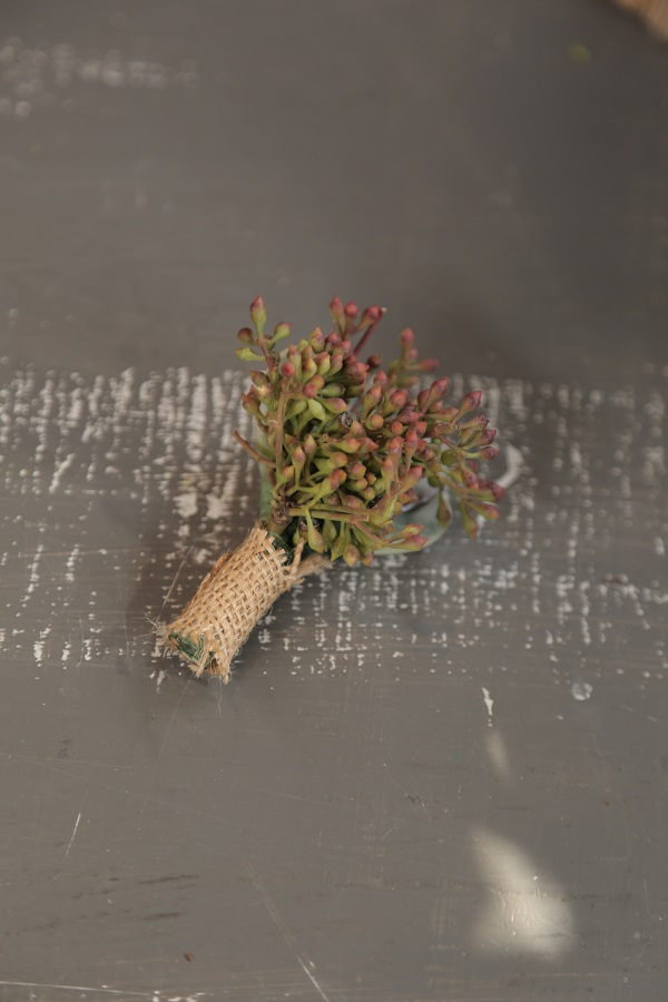 Succulent Boutonnieres, DIY, Eddie Zaratsian, DIY Wedding, DIY Wedding Floral