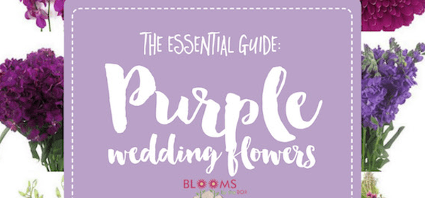 Your Go-To Purple Wedding Flowers Guide on Confetti Day Dreams