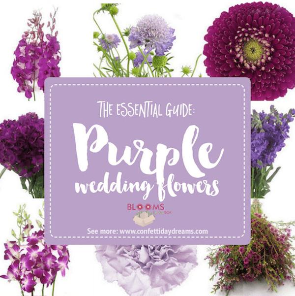 Purple Wedding Flowers, Confetti Day Dreams,