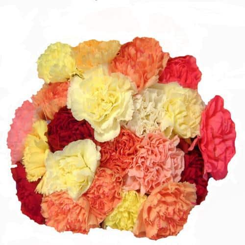 Wedding Flower Favorites: Carnations