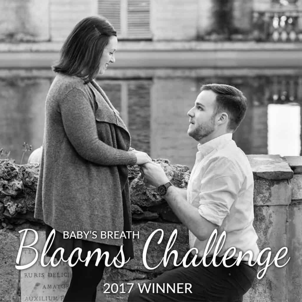 Baby's Breath Blooms Challenge Spring 2017 – WINNER
