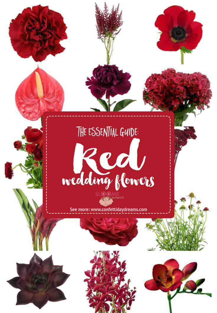 Red Wedding Flowers, Red Wedding, DIY Flowers, DIY Wedding, Confetti Day Dreams