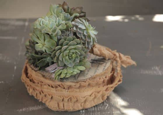Create your Own DIY Succulent Bouquet