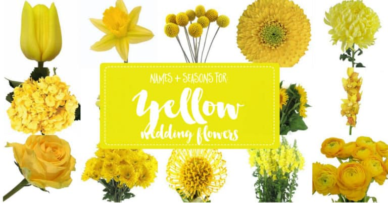 Yellow Flowers Guide, Yellow Flowers, DIY Flowers, DIY Floral Arrangement, Confetti Day Dreams