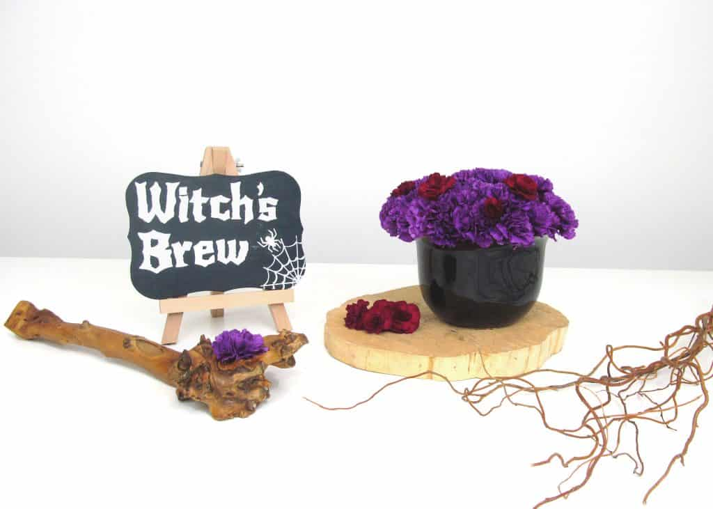 DIY Carnation Witch's Brew for Halloween