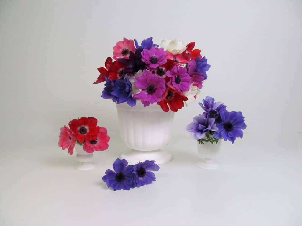 DIY Assorted Anemone Centerpiece