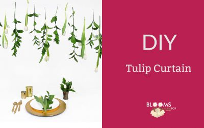 Dreamy DIY Tulip Curtain