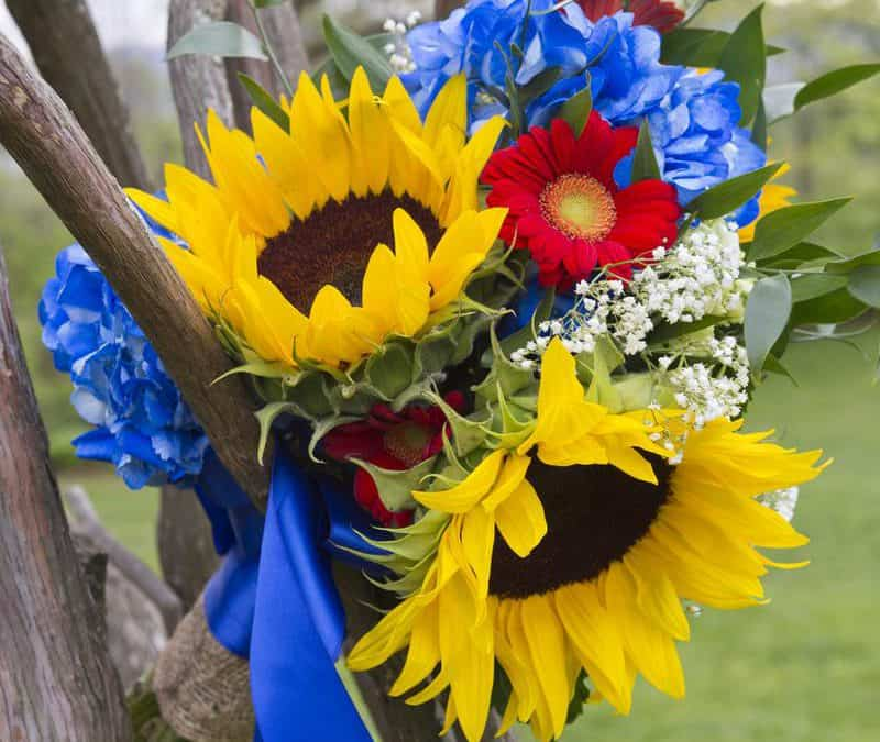 Save, Don't Splurge! Sunflower and Gerbera Daisy Bouquet