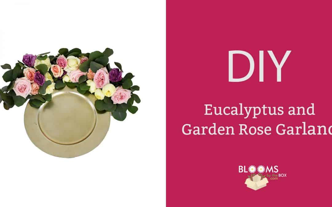 DIY Eucalyptus and Garden Rose Garland