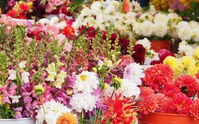 Save Money on Wedding Flowers Featured on Emmaline Bride