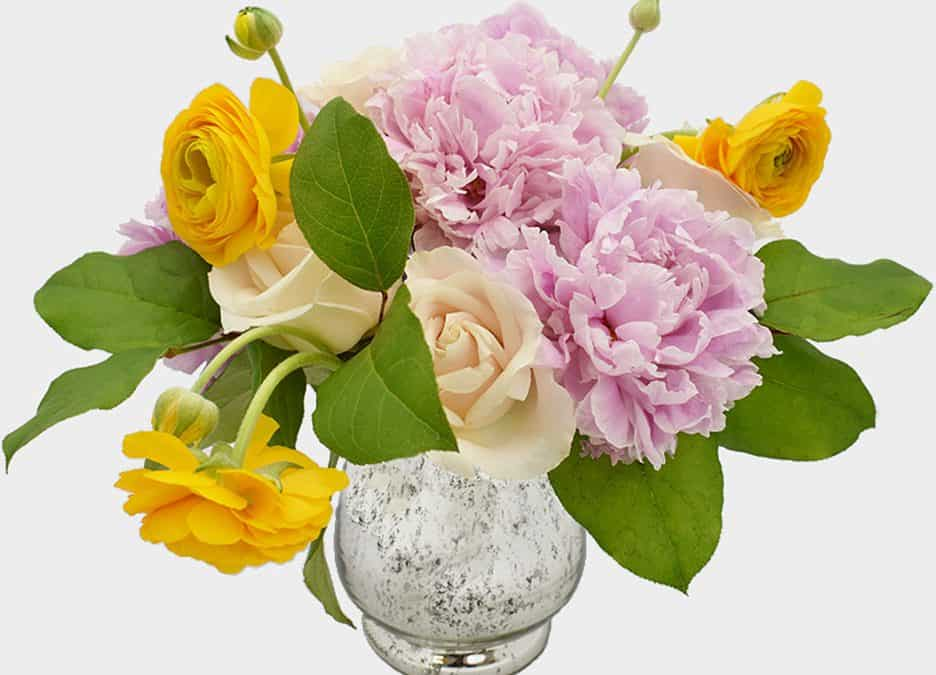 Peony, Rose and Ranunculus Centerpiece