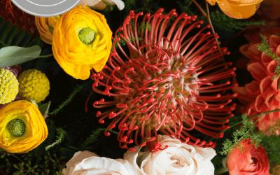 Blooms News: We're Featured on Martha Stewart Weddings!